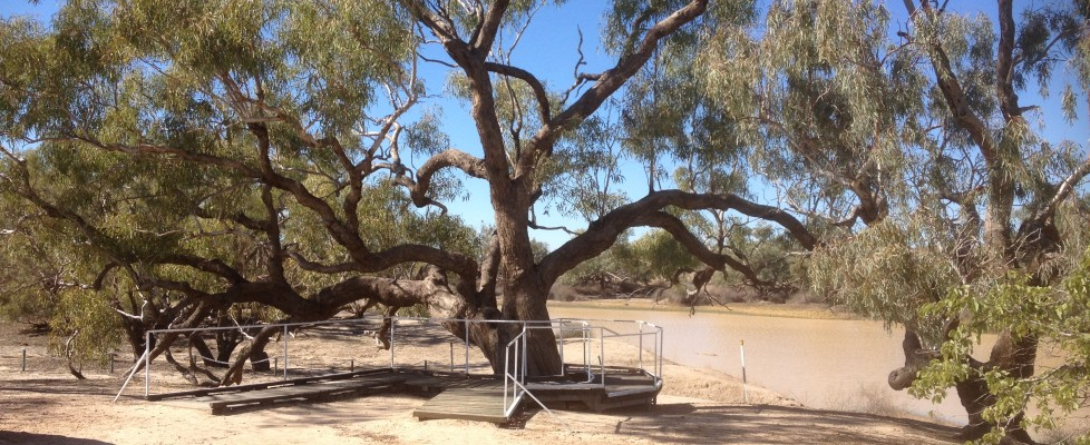 Media Release: The Royal Historical Society of Queensland welcomes Dig Tree national heritage listing